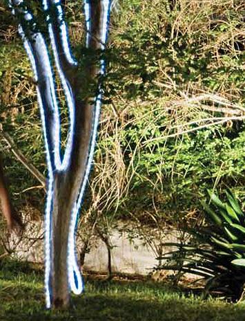 Tendencias y consejos de iluminaci n para el hogar for Iluminacion para palmeras